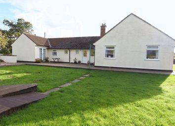 Thumbnail 2 bed detached bungalow for sale in Carleton, Carlisle