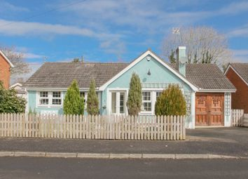 Thumbnail 3 bed bungalow for sale in Temple Rise, Templepatrick, Ballyclare
