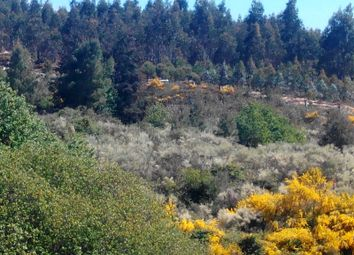 Thumbnail Land for sale in San Geraldo, Bobadela, Oliveira Do Hospital, Coimbra, Central Portugal
