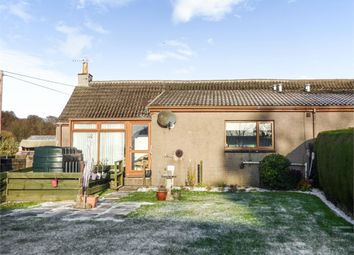 Thumbnail 2 bed semi-detached bungalow for sale in Carmyllie, Carmyllie, Arbroath, Angus