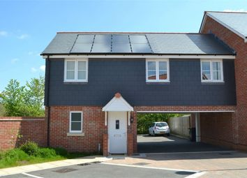 Thumbnail 2 bedroom semi-detached house to rent in Lower Three Acres, Cranbrook, Exeter, Devon