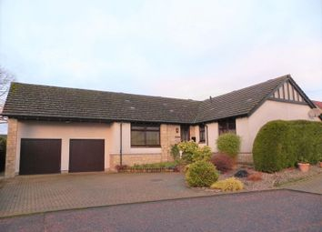 Thumbnail 4 bed bungalow for sale in Drimmie Place, Letham, Forfar