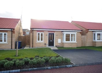 Thumbnail 2 bed detached bungalow to rent in Waxwing Close, Guisborough