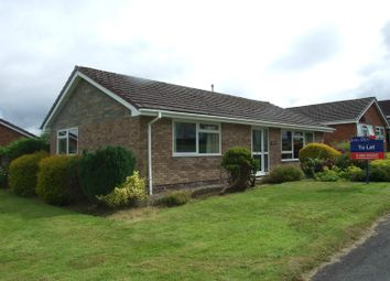 Thumbnail 3 bed detached bungalow to rent in Holcombe Drive, Llandrindod Wells