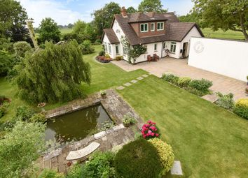 Thumbnail 4 bed detached bungalow for sale in Binsted Lane, Binsted, Arundel