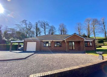 Thumbnail 3 bed detached bungalow for sale in Glanarberth, Llechryd, Cardigan, Ceredigion