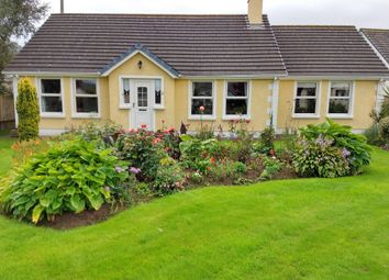 Thumbnail 3 bed detached bungalow for sale in Glenvale, Glenariffe