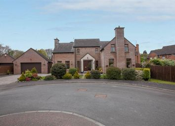 Thumbnail 4 bedroom detached house for sale in 17, Braeside, Newtownards