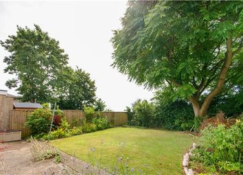 Thumbnail 3 bed semi-detached bungalow for sale in Court Road, Kingswood, Bristol
