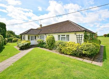 Thumbnail 4 bed bungalow to rent in Guildford Road, Rudgwick, Horsham