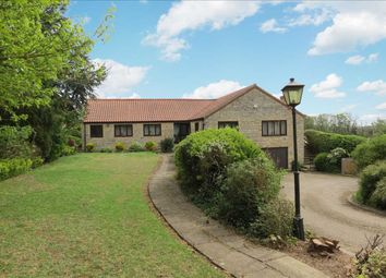 Thumbnail 4 bed bungalow for sale in Thorpe Drove, South Rauceby, Sleaford