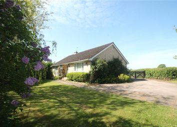 Thumbnail 3 bed detached house for sale in East Orchard, Shaftesbury, Dorset