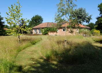 Thumbnail 4 bed detached bungalow for sale in Blackheath, Wenhaston, Halesworth