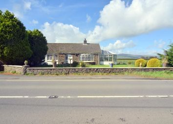 Thumbnail 4 bed detached bungalow for sale in Efailwen, Clynderwen