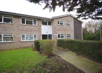 Thumbnail Flat for sale in Dorset Avenue, Chelmsford