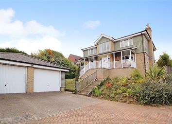 Thumbnail 3 bed detached house for sale in St Johns Hill, Bungay