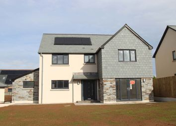 Thumbnail 4 bed detached house for sale in Wellspring Place, Elburton, Plymouth