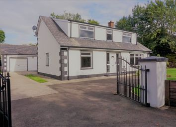 Thumbnail 4 bed detached house for sale in Cottage Row, Eglinton. Derry / Londonderry