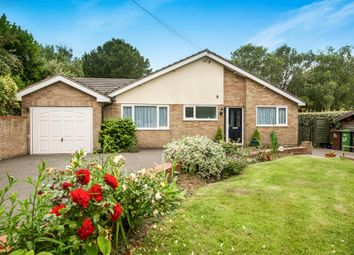 Thumbnail 3 bed detached bungalow for sale in Avondale Road, St. Leonards-On-Sea