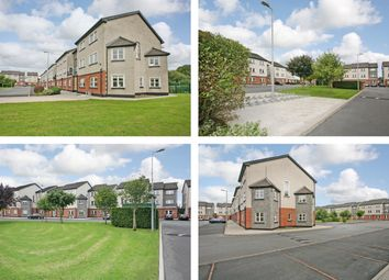 Thumbnail Property for sale in The Groody Portfolio, Castletroy, Limerick