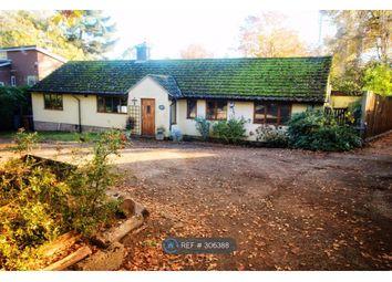 Thumbnail 4 bedroom bungalow to rent in Fen Walk, Woodbridge