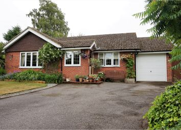 Thumbnail 3 bed bungalow for sale in Ludshott Grove, Headley Down