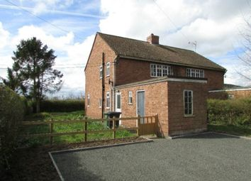 Thumbnail 3 bed semi-detached house to rent in Cherry Orchard, Tillington, Hereford