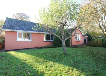 Thumbnail 4 bed detached bungalow for sale in Goathurst, Bridgwater