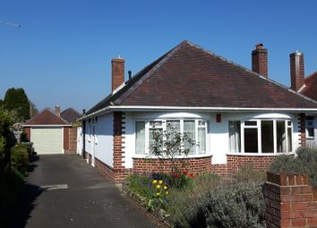 Thumbnail 3 bed detached bungalow to rent in Craigmoor Avenue, Queens Park, Bournemouth, Dorset