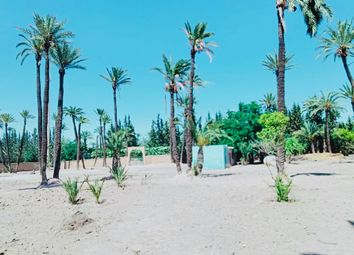 Thumbnail Land for sale in Palmera, Morocco