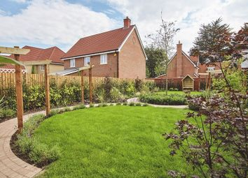 Thumbnail 3 bedroom semi-detached house for sale in The Maple At St Luke's Park, Runwell Road, Runwell, Essex