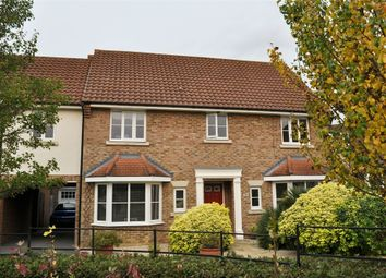 Thumbnail 5 bed semi-detached house for sale in Chestnut Avenue, Great Notley, Braintree, Essex