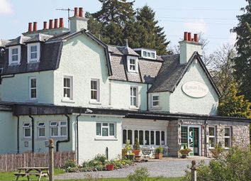 Thumbnail Leisure/hospitality for sale in Rowan Tree Country Hotel, Loch Alvie, Near Aviemore