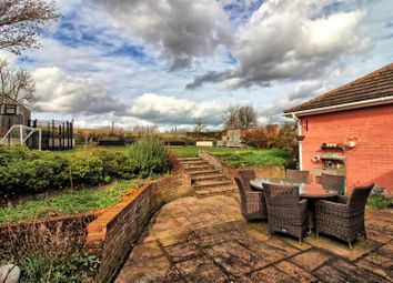 Thumbnail 4 bed detached bungalow for sale in Aspenden, Buntingford