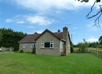 Thumbnail 3 bedroom detached bungalow to rent in The Bungalow, Hewletts Farm, Stalbridge, Sturminster Newton