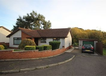 Thumbnail 4 bed detached bungalow for sale in Denvale Gardens, Kennoway, Fife