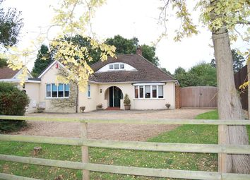 Thumbnail 4 bed bungalow for sale in Crown Cottage, Green Road, Thorpe Green