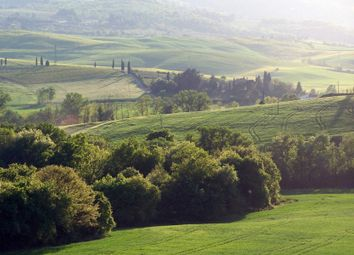 Thumbnail 12 bed town house for sale in 53024 Montalcino, Province Of Siena, Italy