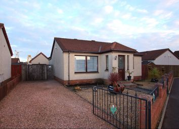 Thumbnail 2 bed bungalow for sale in Don Street, Methil, Leven