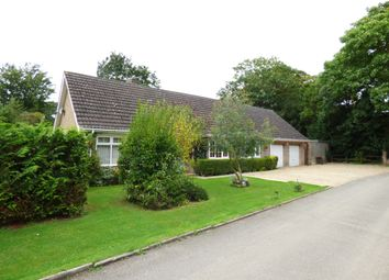 Thumbnail 4 bed detached bungalow for sale in Priory Gardens, Chesterton