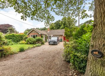 Thumbnail 3 bed detached bungalow for sale in Vale Road, High Kelling, Holt