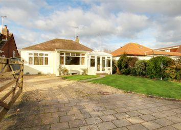 Thumbnail 2 bed bungalow for sale in Little Paddocks, Ferring, Worthing