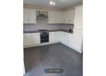 Thumbnail 4 bed detached house to rent in Houghton Way, Birstall, Leicester