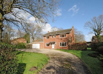 Thumbnail 4 bed detached house to rent in Drury Lane, Mortimer Common, Reading