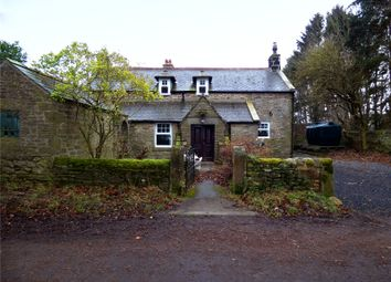 Thumbnail 4 bed detached house to rent in East Farm House, Corbridge, Northumberland