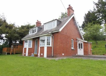 Thumbnail 3 bed detached bungalow to rent in Woodgreen, Kerry Road, Newtown, Powys