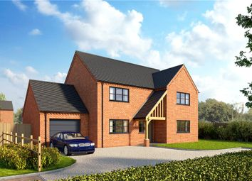 Thumbnail Property for sale in Hall Lane, Moulton Seas End, Lincolnshire