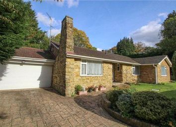 Thumbnail 4 bed bungalow for sale in Saville Gardens, Camberley, Surrey