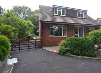 Thumbnail 4 bed detached bungalow to rent in Available: Now Crundale, Wye, Ashford - Unfurnished