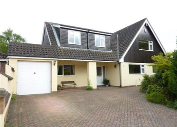 Thumbnail 4 bed detached house for sale in Meadowlands, Chapel Lane, Ashby Cum Fenby, Grimsby
